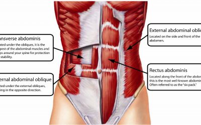 How to activate your transverse abdominal muscle